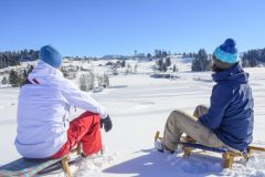 Sport and Leisure Activities in Sulzberg/Vorarlbergle enjoying a snowy and sunny winter day together