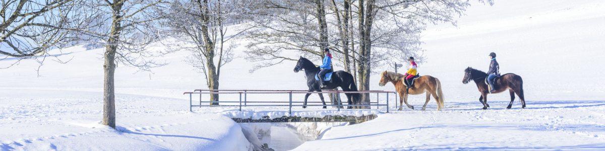 Reiten im Winter