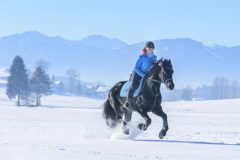 horse riding in snowy landscape